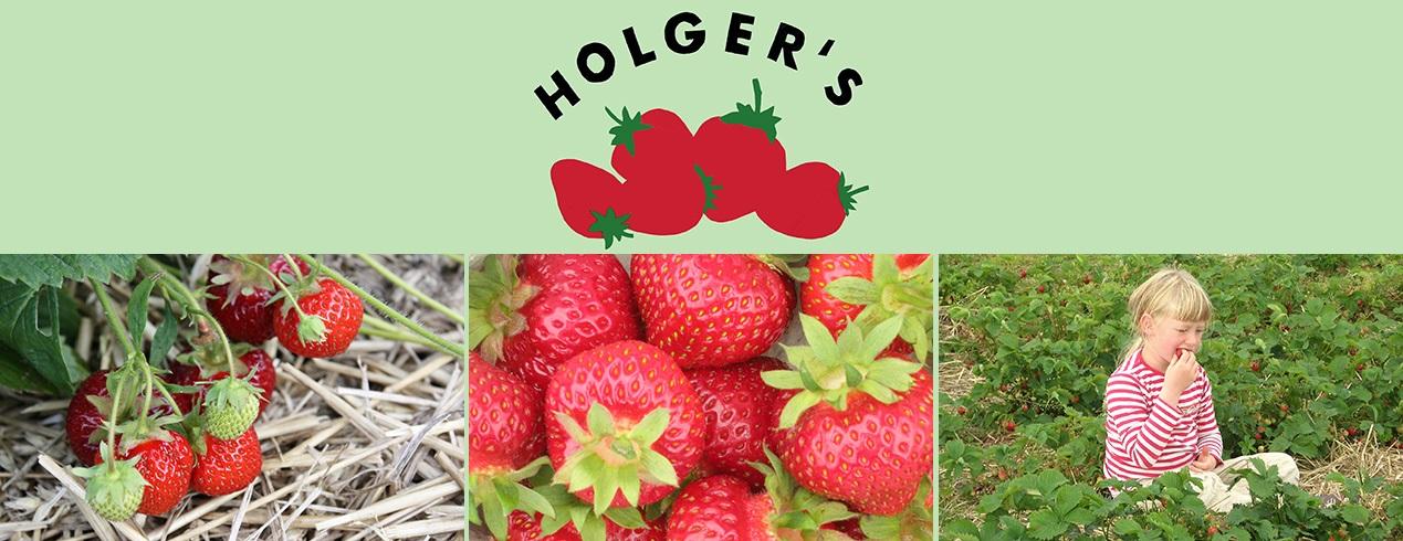 Holgers Jordbær